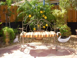 Relaxing Bench by Lemon Tree